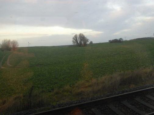 Norddeutschland vom Zug aus (Foto: Benjamin Kindler)